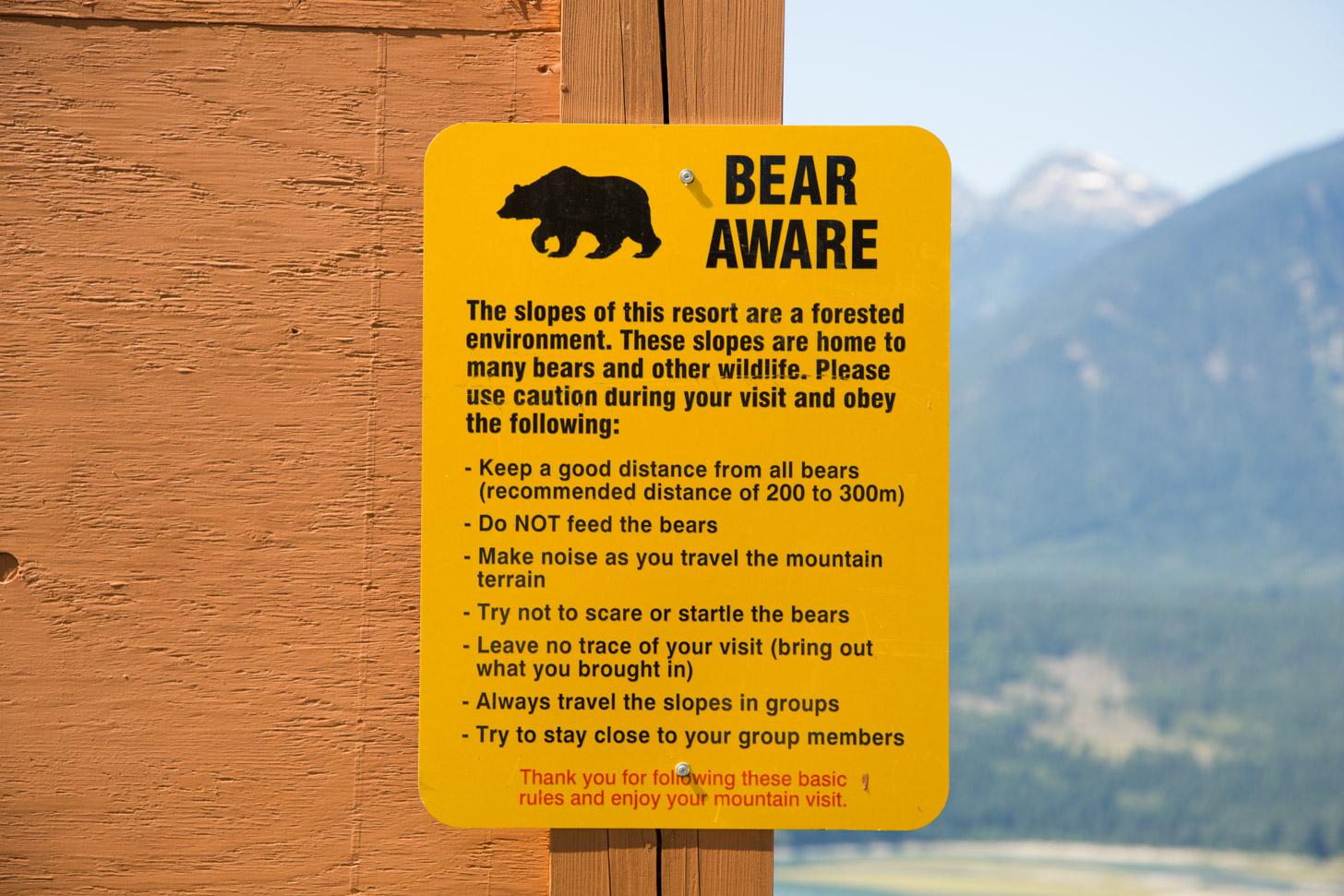 Pas op voor de wilde beren